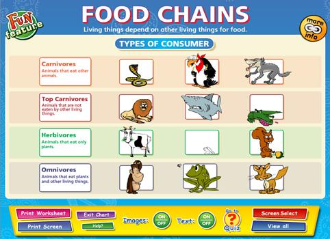 Food Webs And Food Chains Worksheet 010 - Food Webs And Food Chains Worksheet